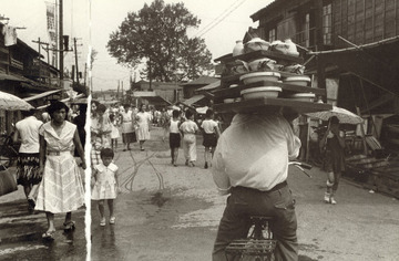 19561